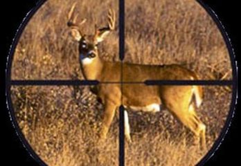 Hunting scope Reviews